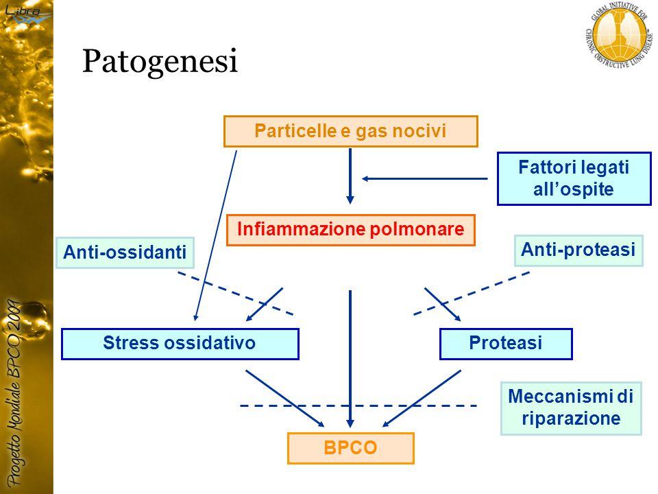 Particelle e gas nocivi Infiammazione polmonare BPCO Stress ossidativoProteasi Fattori legati all'ospite Anti-ossidanti Anti-proteasi Meccanismi di riparazione Patogenesi