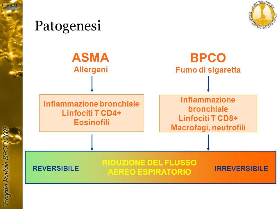 ASMA Allergeni BPCO Fumo di sigaretta Infiammazione bronchiale Linfociti T CD4+ Eosinofili Infiammazione bronchiale Linfociti T CD8+ Macrofagi, neutrofili RIDUZIONE DEL FLUSSO AEREO ESPIRATORIO REVERSIBILE IRREVERSIBILE Patogenesi