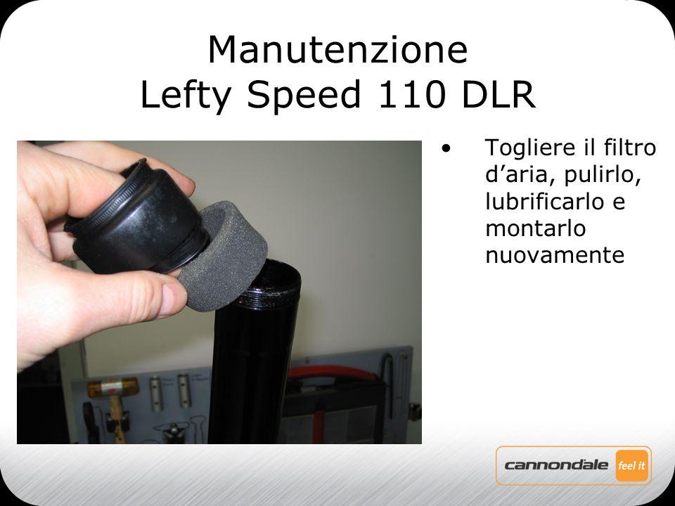 Togliere il filtro d'aria, pulirlo, lubrificarlo e montarlo nuovamente Manutenzione Lefty Speed 110 DLR