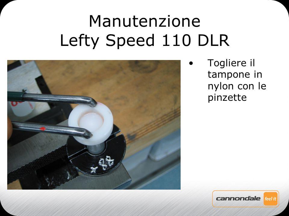 Togliere il tampone in nylon con le pinzette Manutenzione Lefty Speed 110 DLR