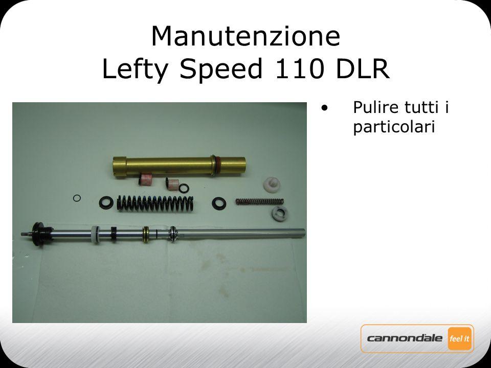 Pulire tutti i particolari Manutenzione Lefty Speed 110 DLR