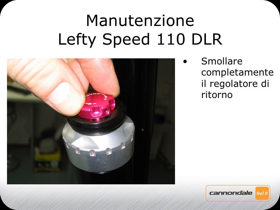 Smollare completamente il regolatore di ritorno Manutenzione Lefty Speed 110 DLR