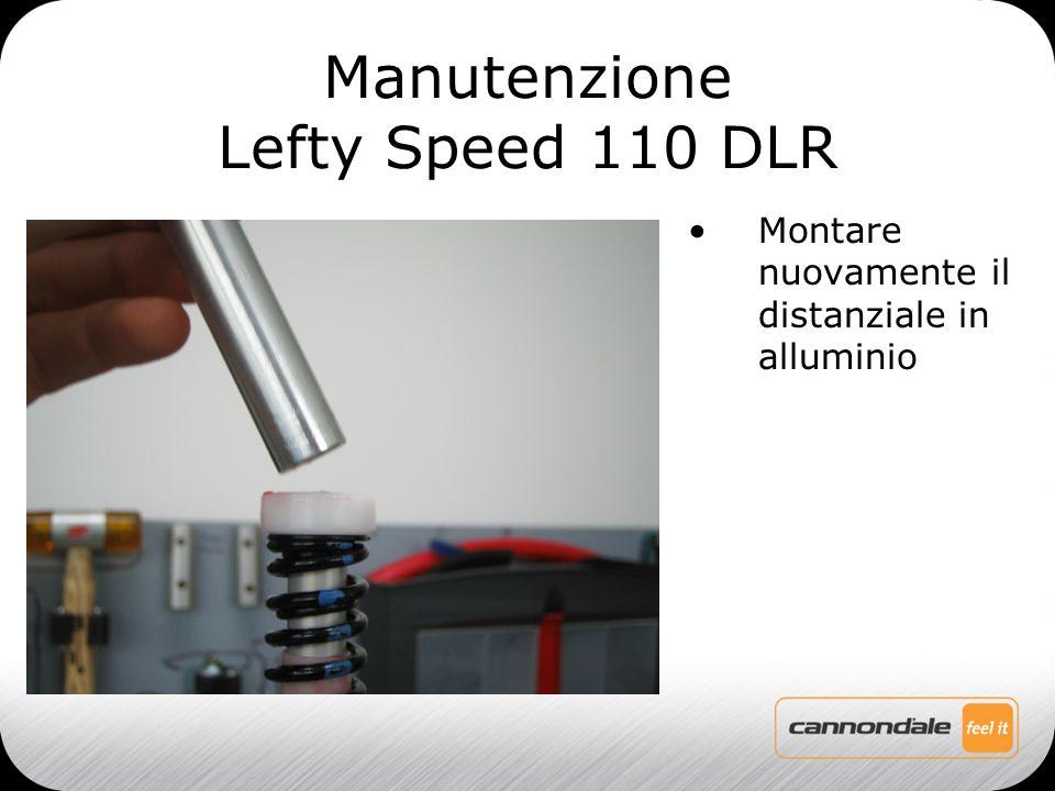 Montare nuovamente il distanziale in alluminio Manutenzione Lefty Speed 110 DLR