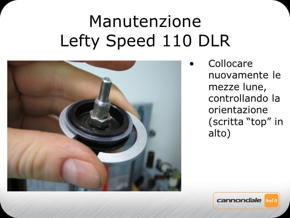 Collocare nuovamente le mezze lune, controllando la orientazione (scritta top in alto) Manutenzione Lefty Speed 110 DLR