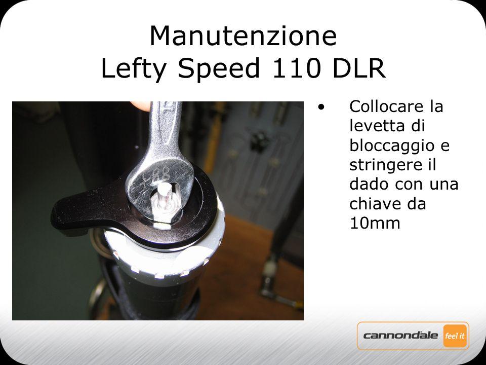 Collocare la levetta di bloccaggio e stringere il dado con una chiave da 10mm Manutenzione Lefty Speed 110 DLR