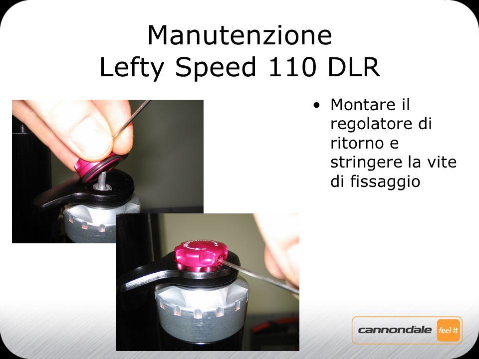 Montare il regolatore di ritorno e stringere la vite di fissaggio Manutenzione Lefty Speed 110 DLR