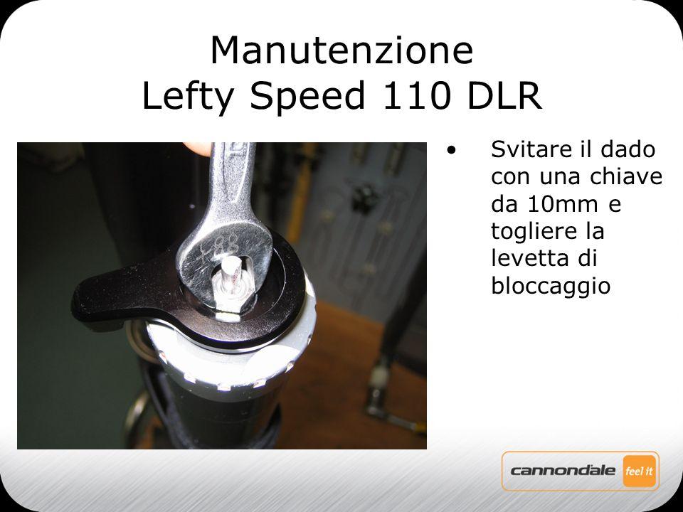 Svitare il dado con una chiave da 10mm e togliere la levetta di bloccaggio Manutenzione Lefty Speed 110 DLR