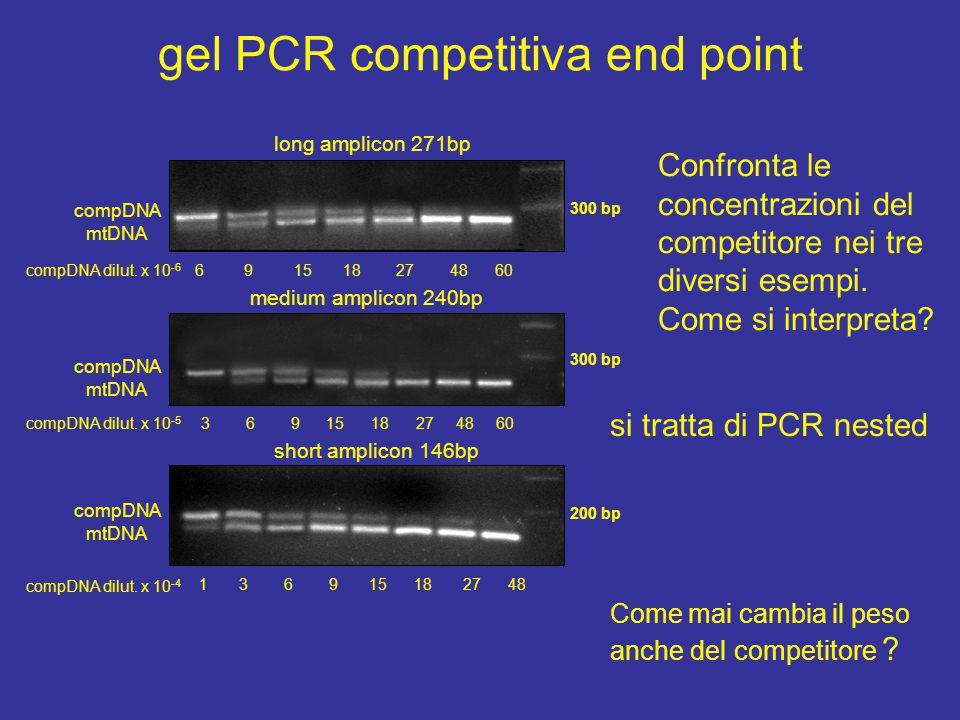 Plot valori di fluorescenza gel PCR competitiva log.