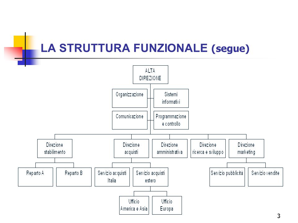 3 LA STRUTTURA FUNZIONALE (segue)