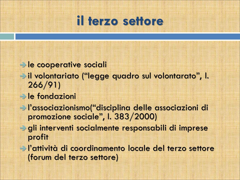 il terzo settore  le cooperative sociali  il volontariato ( legge quadro sul volontarato , l.