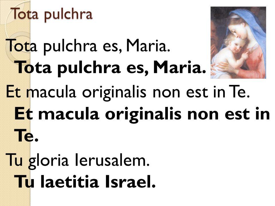 Tota pulchra Tota pulchra es, Maria. Et macula originalis non est in Te. Tu gloria Ierusalem. Tu laetitia Israel.