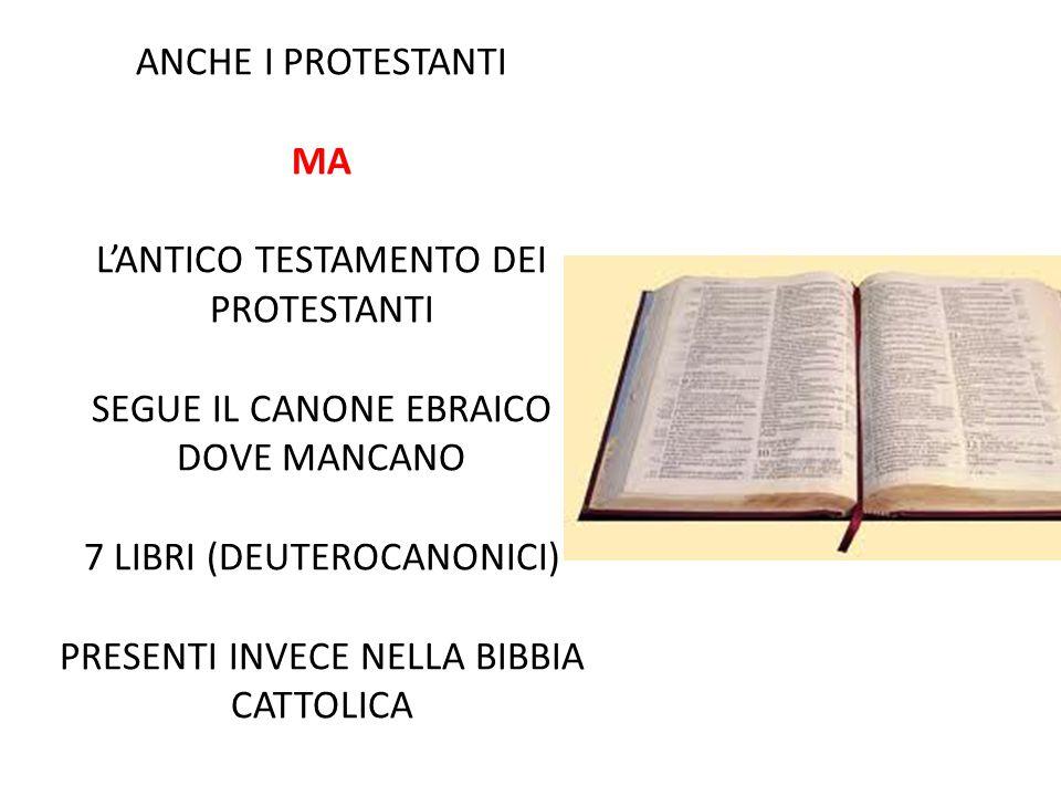 ANCHE I PROTESTANTI MA L'ANTICO TESTAMENTO DEI PROTESTANTI SEGUE IL CANONE EBRAICO DOVE MANCANO 7 LIBRI (DEUTEROCANONICI) PRESENTI INVECE NELLA BIBBIA