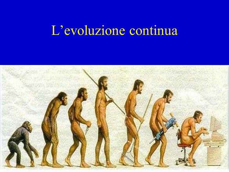 L'evoluzione continua
