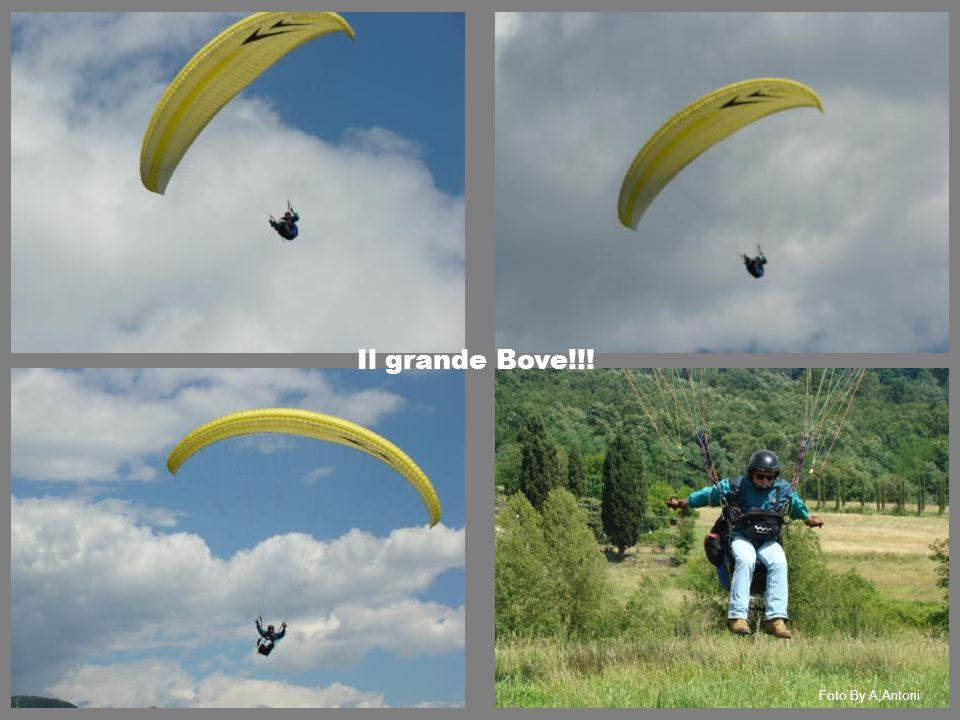 Il grande Bove!!! Foto By A,Antoni