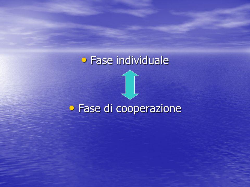 Fase individuale Fase individuale Fase di cooperazione Fase di cooperazione