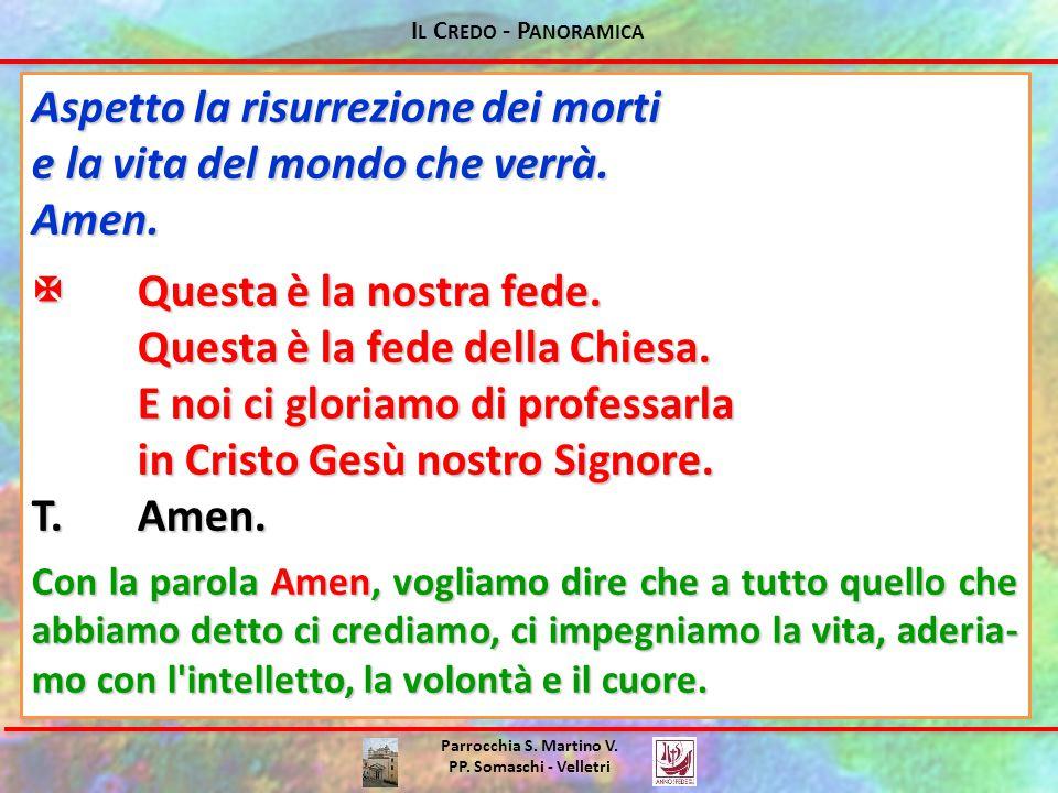 I L C REDO - P ANORAMICA Parrocchia S. Martino V. PP. Somaschi - Velletri Aspetto la risurrezione dei morti e la vita del mondo che verrà. Amen. Ques