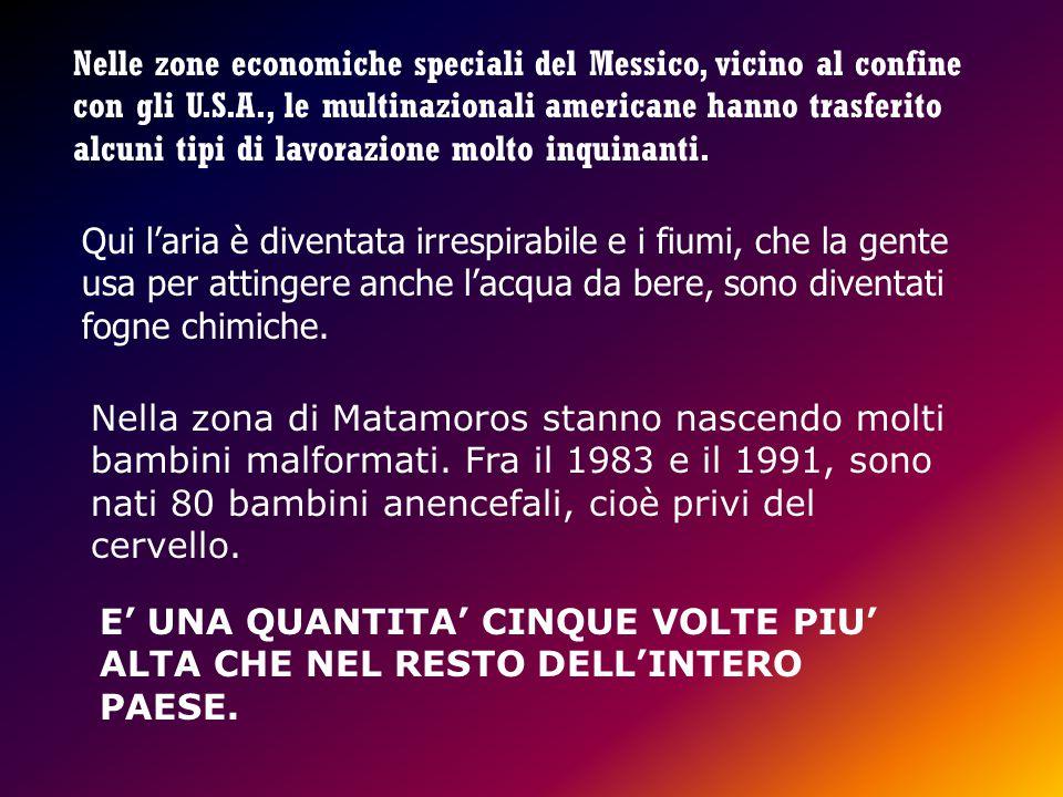 I testi sono tratti da Geografia del Supermercato Mondiale - Ed. EMI -Bologna