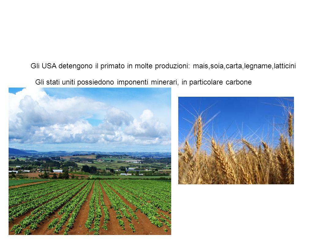 Settore primario Gli USA detengono il primato in molte produzioni: mais,soia,carta,legname,latticini Gli stati uniti possiedono imponenti minerari, in