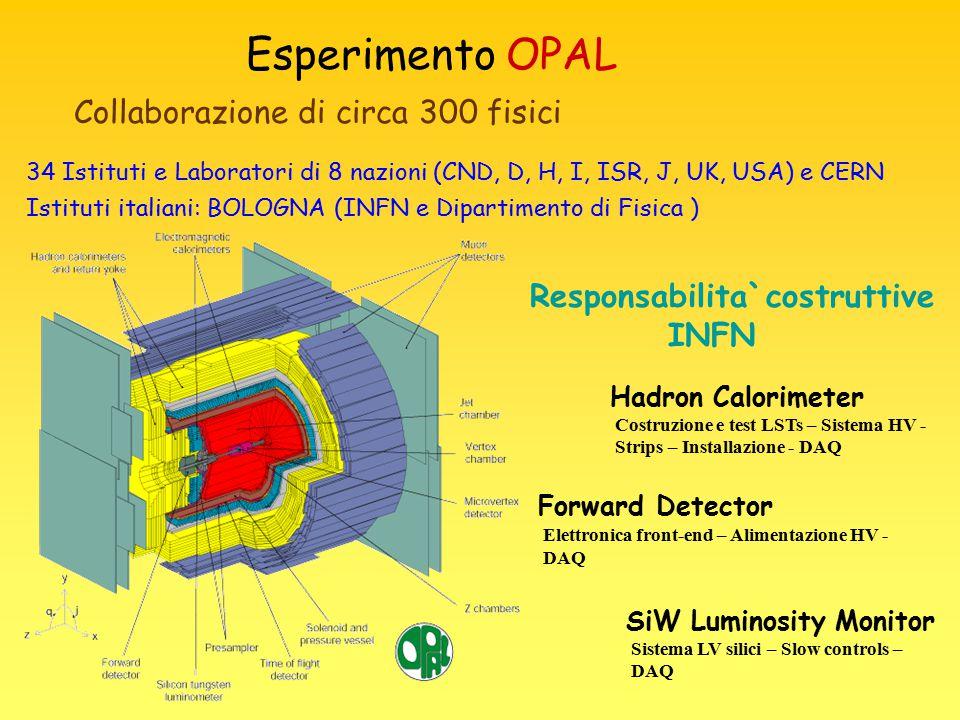 Esperimento OPAL Responsabilita`costruttive INFN 34 Istituti e Laboratori di 8 nazioni (CND, D, H, I, ISR, J, UK, USA) e CERN Istituti italiani: BOLOG