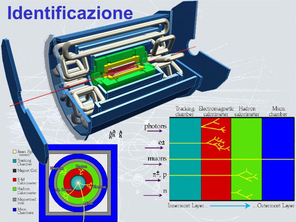 I grandi rivelatori alimentatore particella ADC-TDC