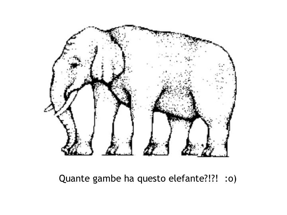 Quante gambe ha questo elefante?!?! :o)