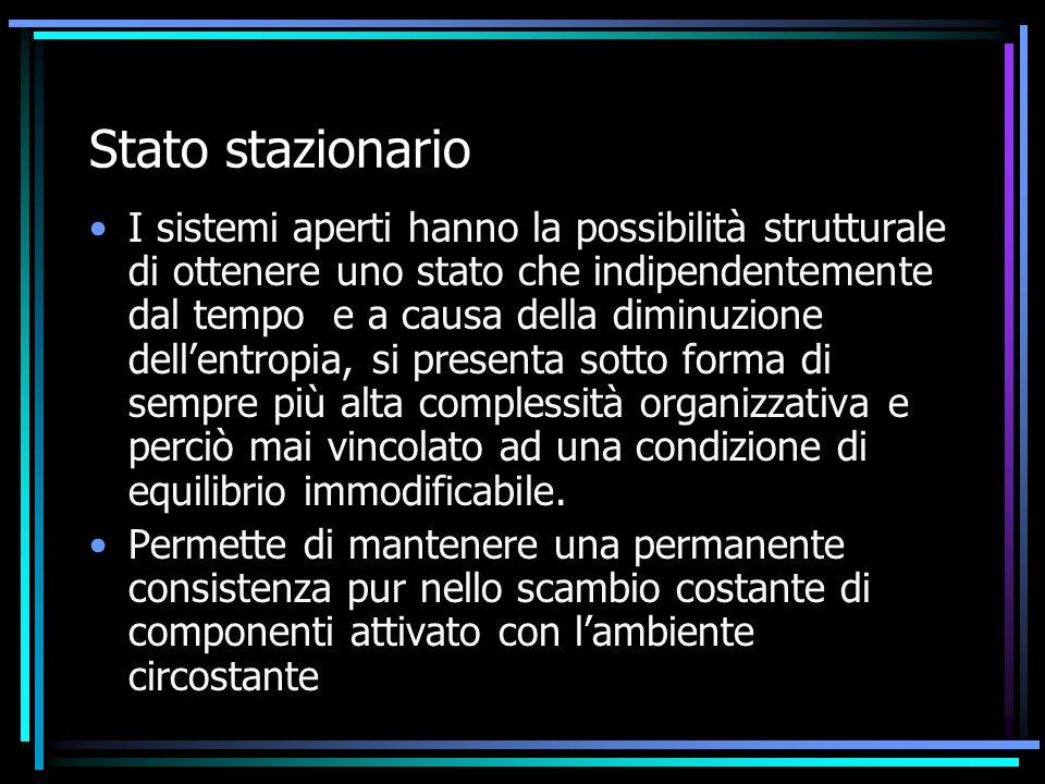 Stato stazionario I sistemi aperti hanno la possibilità strutturale di ottenere uno stato che indipendentemente dal tempo e a causa della diminuzione