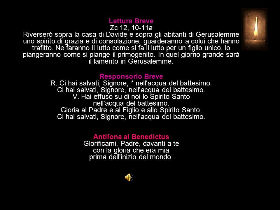 Lettura Breve Zc 12, 10-11a Riverserò sopra la casa di Davide e sopra gli abitanti di Gerusalemme uno spirito di grazia e di consolazione: guarderanno a colui che hanno trafitto.
