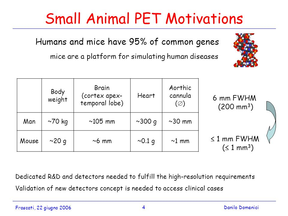 4Danilo Domenici Frascati, 22 giugno 2006 Small Animal PET Motivations Humans and mice have 95% of common genes mice are a platform for simulating human diseases  1 mm FWHM (  1 mm 3 ) 6 mm FWHM (200 mm 3 ) Dedicated R&D and detectors needed to fulfill the high-resolution requirements Validation of new detectors concept is needed to access clinical cases Body weight Brain (cortex apex- temporal lobe) Heart Aorthic cannula (  ) Man~70 kg~105 mm~300 g~30 mm Mouse~20 g~6 mm~0.1 g~1 mm