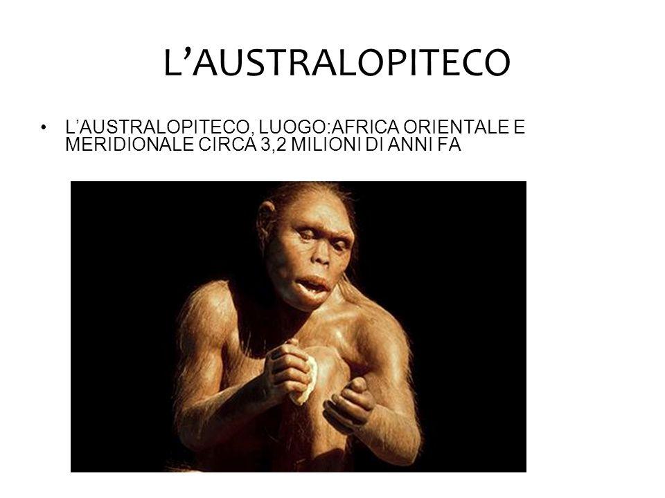 L'AUSTRALOPITECO L'AUSTRALOPITECO, LUOGO:AFRICA ORIENTALE E MERIDIONALE CIRCA 3,2 MILIONI DI ANNI FA