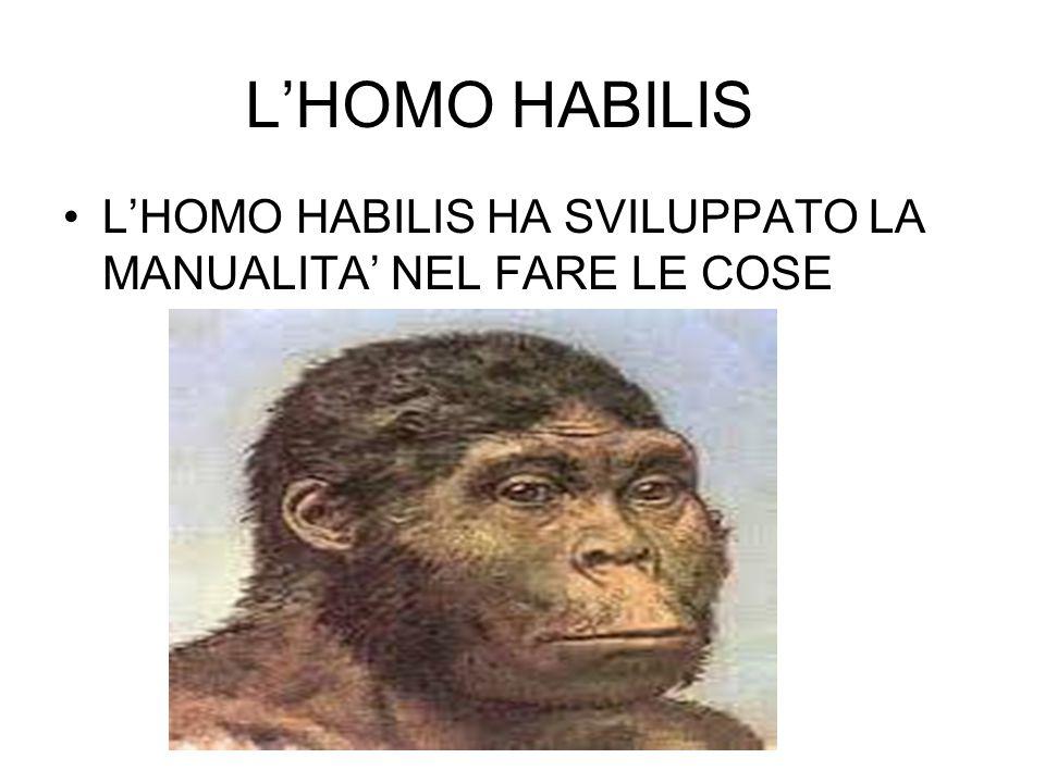 L'HOMO HABILIS L'HOMO HABILIS HA SVILUPPATO LA MANUALITA' NEL FARE LE COSE