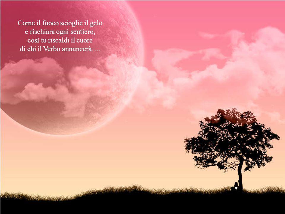 Una luce fioca e debole sembra sorgere e poi crescere, come fiamma che rigenera e che illumina la via.