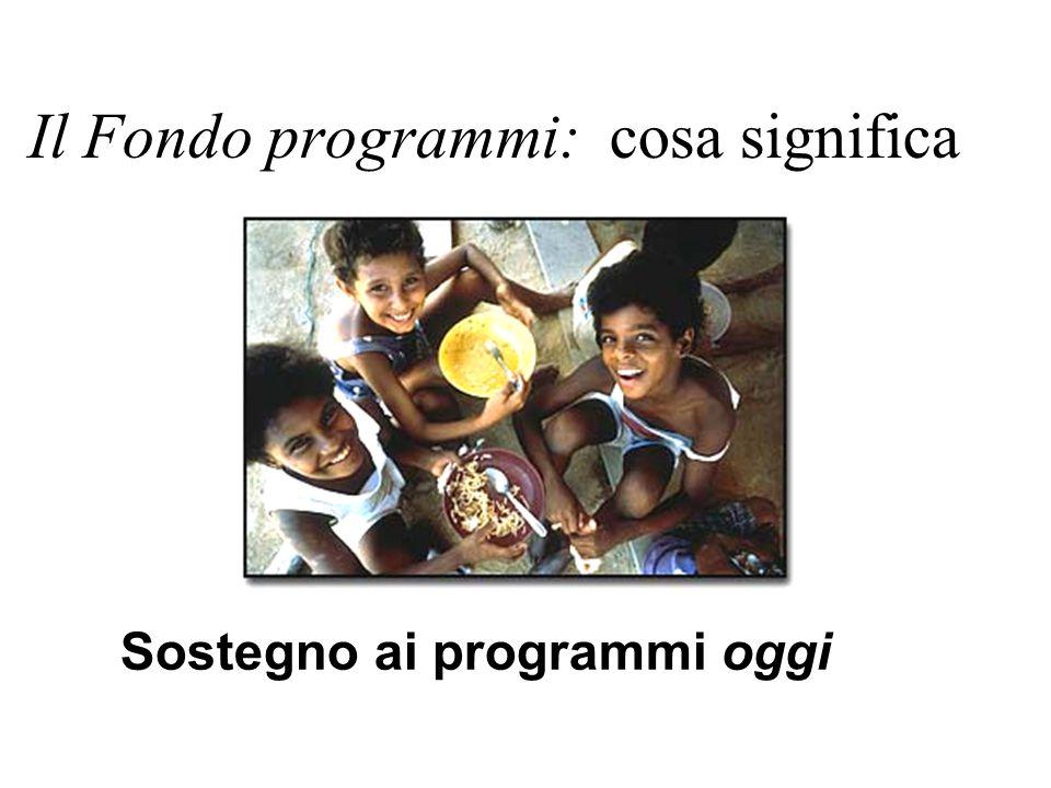 Il Fondo programmi: cosa significa Sostegno ai programmi oggi