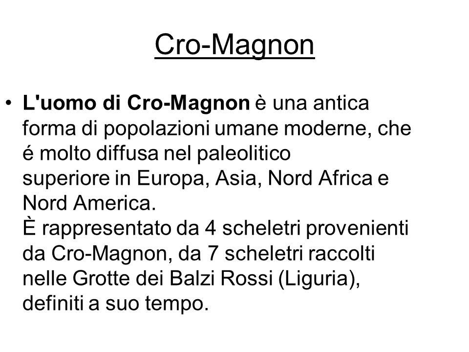 L uomo di Cro-Magnon è una antica forma di popolazioni umane moderne, che é molto diffusa nel paleolitico superiore in Europa, Asia, Nord Africa e Nord America.