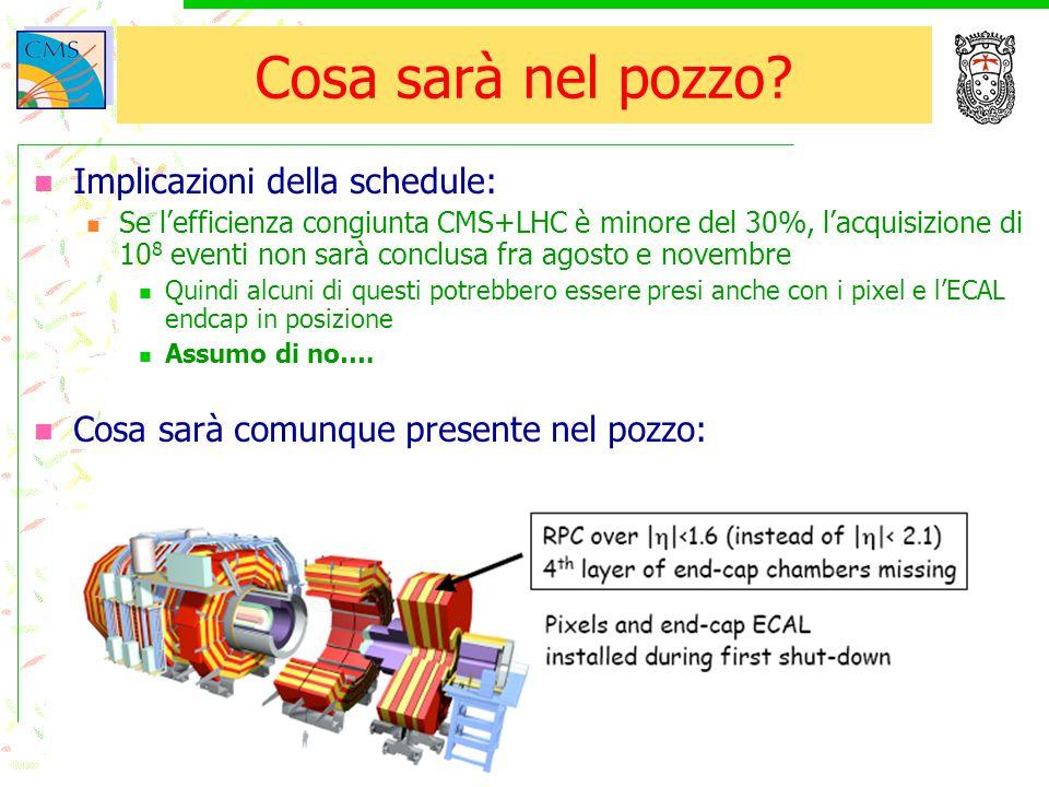 16/11/2004Tommaso Boccali5 Cosa sarà nel pozzo? Implicazioni della schedule: Se l'efficienza congiunta CMS+LHC è minore del 30%, l'acquisizione di 10
