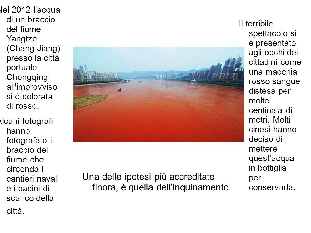 Il terribile spettacolo si è presentato agli occhi dei cittadini come una macchia rosso sangue distesa per molte centinaia di metri. Molti cinesi hann