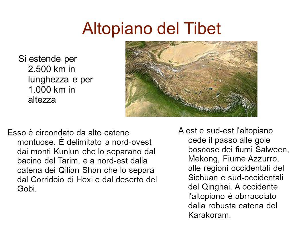 Altopiano del Tibet Si estende per 2.500 km in lunghezza e per 1.000 km in altezza A est e sud-est l'altopiano cede il passo alle gole boscose dei fiu