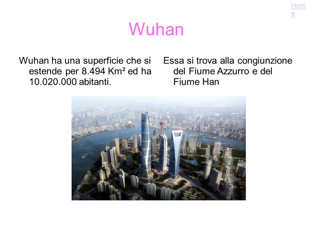 Wuhan Wuhan ha una superficie che si estende per 8.494 Km² ed ha 10.020.000 abitanti. Essa si trova alla congiunzione del Fiume Azzurro e del Fiume Ha