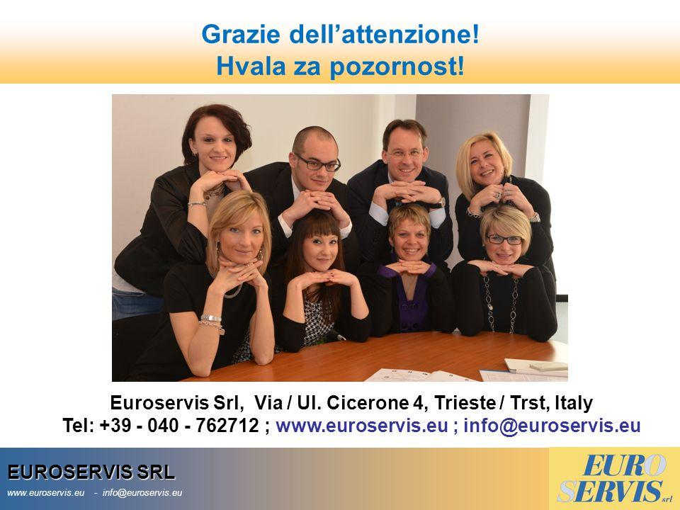 EUROSERVIS SRL www.euroservis.eu - info@euroservis.eu Grazie dell'attenzione.