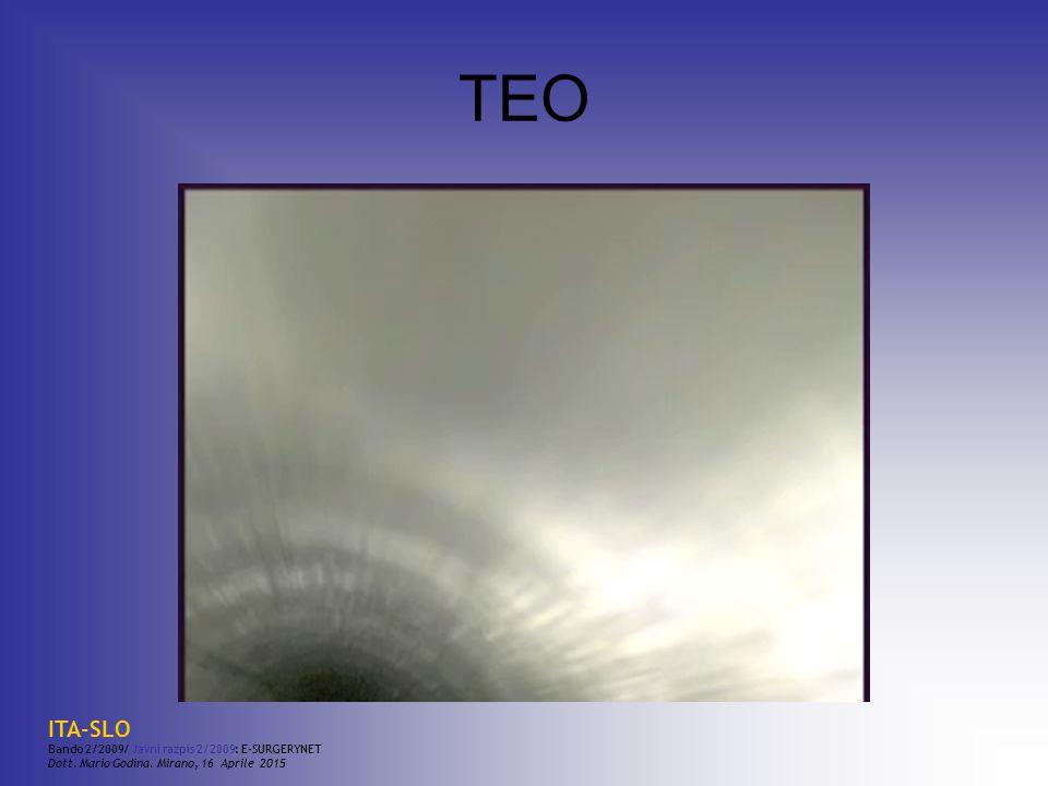 TEO ITA-SLO Bando 2/2009/ Javni razpis 2/2009: E-SURGERYNET Dott. Mario Godina. Mirano, 16 Aprile 2015