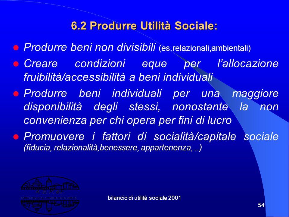 bilancio di utilità sociale 2001 53