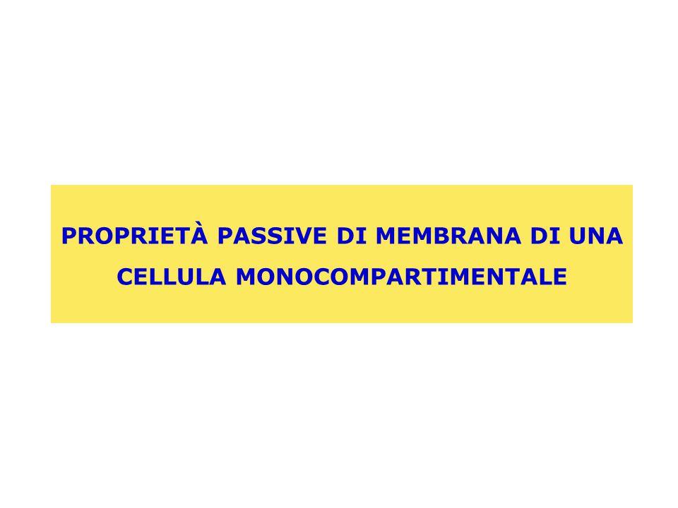 PROPRIETÀ PASSIVE DI MEMBRANA DI UNA CELLULA MONOCOMPARTIMENTALE