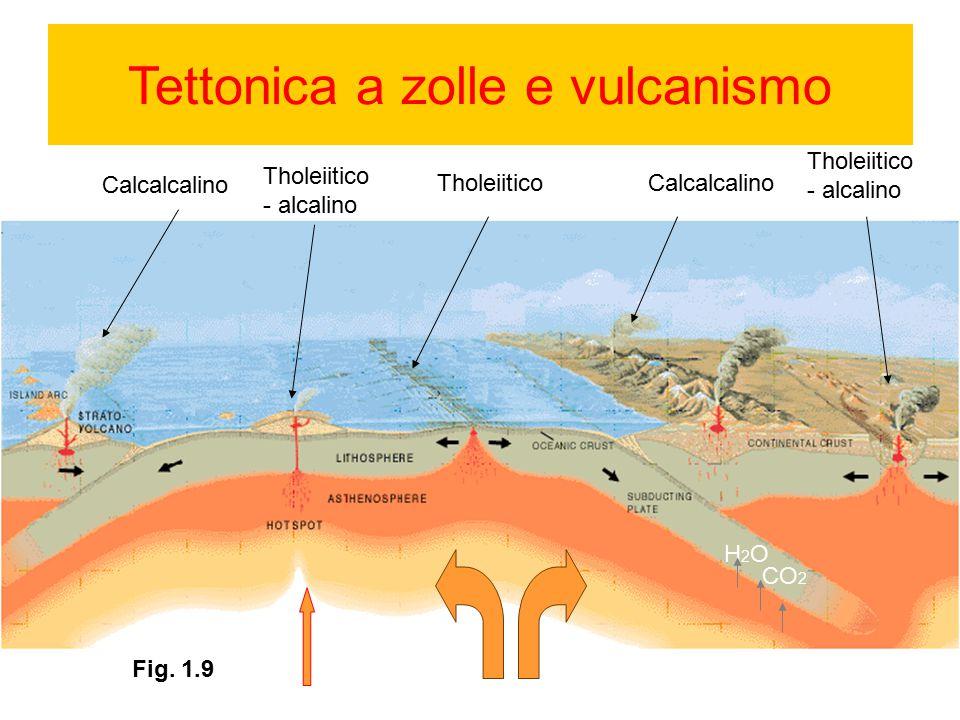 Tettonica a zolle e vulcanismo H2OH2O CO 2 Fig. 1.9 Calcalcalino Tholeiitico - alcalino TholeiiticoCalcalcalino Tholeiitico - alcalino