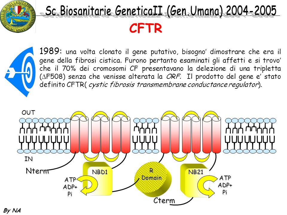 By NA CFTR 1989: una volta clonato il gene putativo, bisogno' dimostrare che era il gene della fibrosi cistica. Furono pertanto esaminati gli affetti