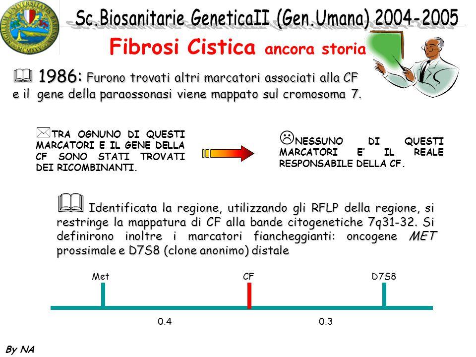 By NA  1989: si riesce ad evidenziare la presenza di linkage disequilibrium per i marcatori XV2.c e KM19 che risulteranno far parte del 5' del gene Fibrosi Cistica: ancora storia  1986-: si identificano altri polimorfismi nella regione e si fonda un consorzio per cumulare i dati raccolti in piu' centri.
