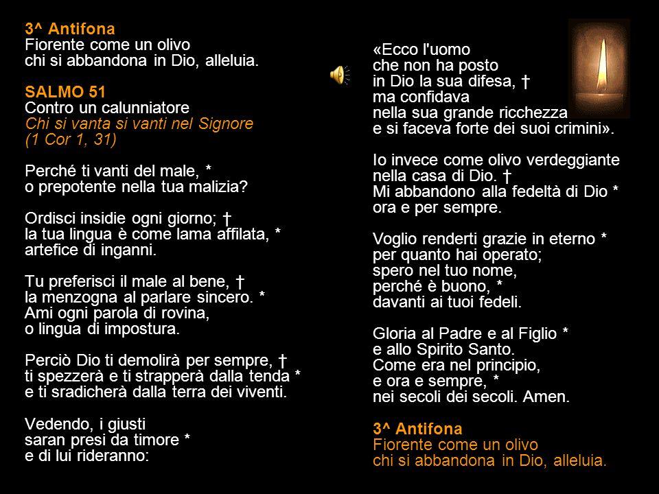 3^ Antifona Fiorente come un olivo chi si abbandona in Dio, alleluia.