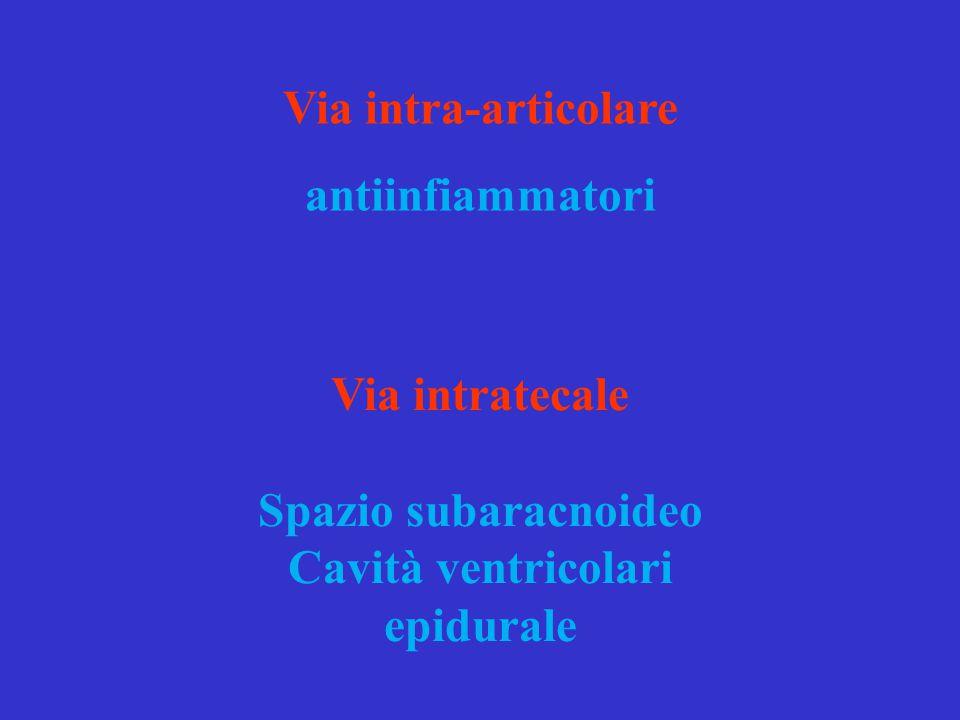 Via intratecale Spazio subaracnoideo Cavità ventricolari epidurale Via intra-articolare antiinfiammatori
