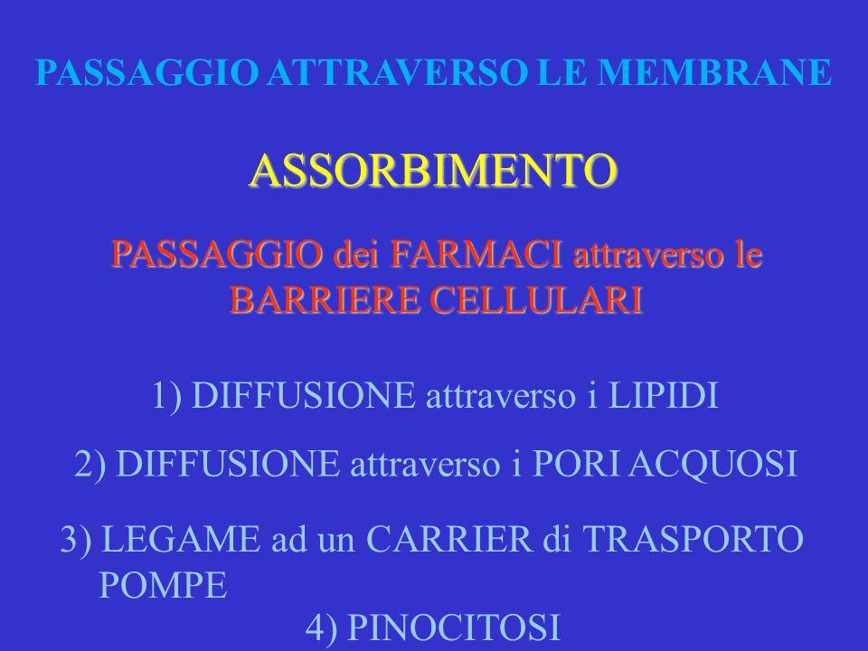 PASSAGGIO ATTRAVERSO LE MEMBRANE PASSAGGIO dei FARMACI attraverso le BARRIERE CELLULARI ASSORBIMENTO 2) DIFFUSIONE attraverso i PORI ACQUOSI 3) LEGAME