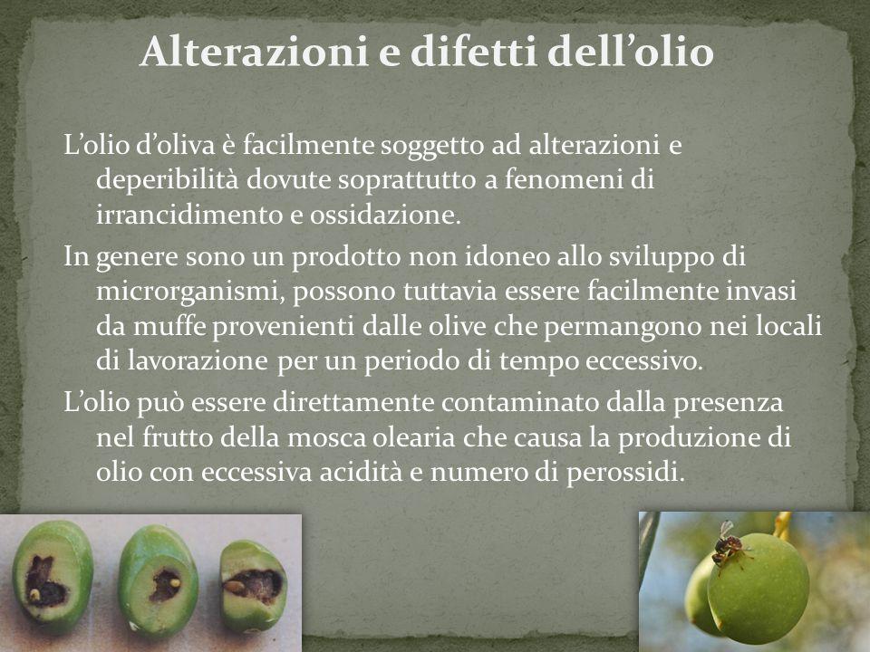 Alterazioni e difetti dell'olio L'olio d'oliva è facilmente soggetto ad alterazioni e deperibilità dovute soprattutto a fenomeni di irrancidimento e o