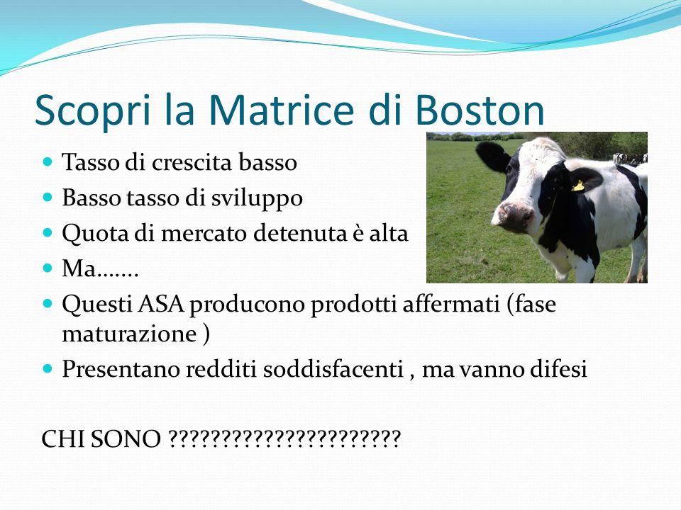 Scopri la Matrice di Boston Tasso di crescita basso Basso tasso di sviluppo Quota di mercato detenuta è alta Ma….... Questi ASA producono prodotti aff