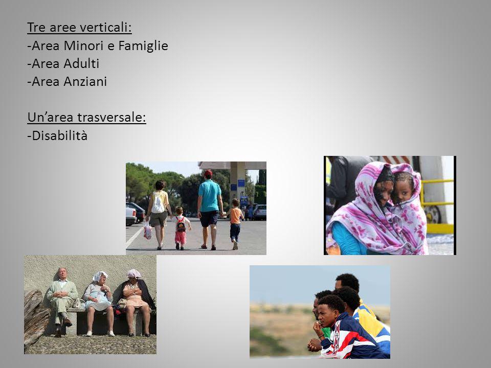 Tre aree verticali: -Area Minori e Famiglie -Area Adulti -Area Anziani Un'area trasversale: -Disabilità